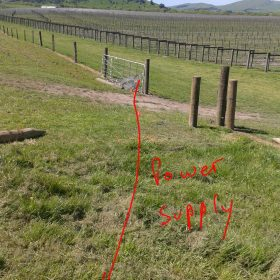 Picture of farm paddock with red lines showing where electric cables are.